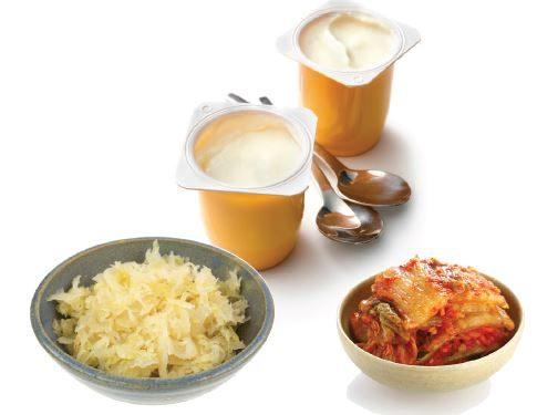 Top 5 Benefits of Probiotics