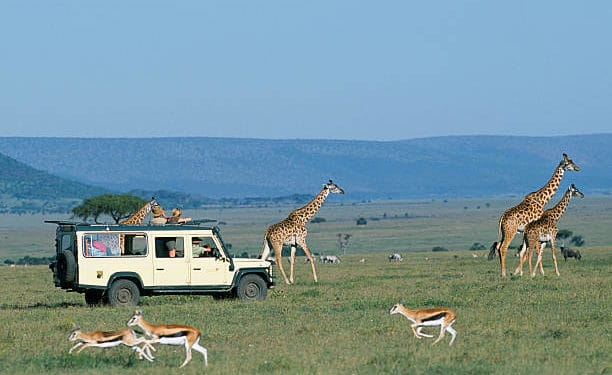8 Top Best Private Wildlife Conservancies in Kenya