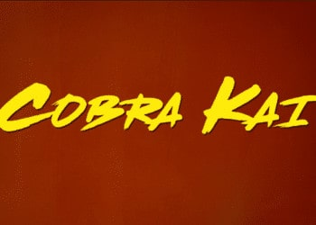 Cobra Kai is a martial arts web series based on the Karate Kid movies.