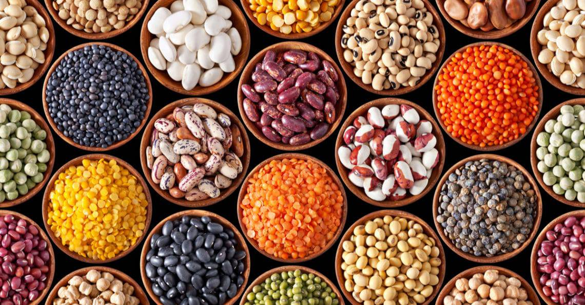 Plant-Based Diets - The Secret to Great Health