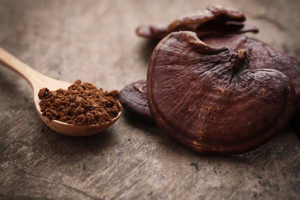 medicinal mushrooms