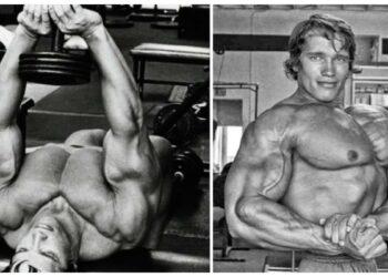 Arnold Schwarzenegger Image courtesy : fitnessandpower.com