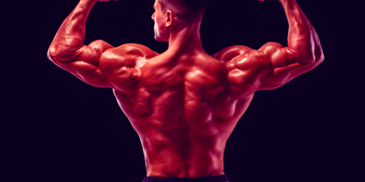 Some Killer Back and Bicep Workouts to Build Strong Muscles