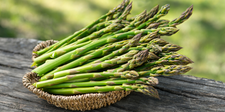 Calories in Asparagus and Their Amazing Health Benefits