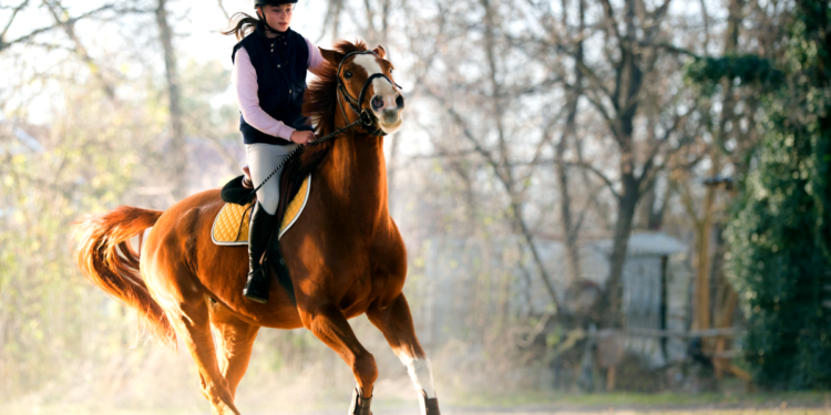 Enjoy a Horse Riding Experience At Least Once in Your Lifetime