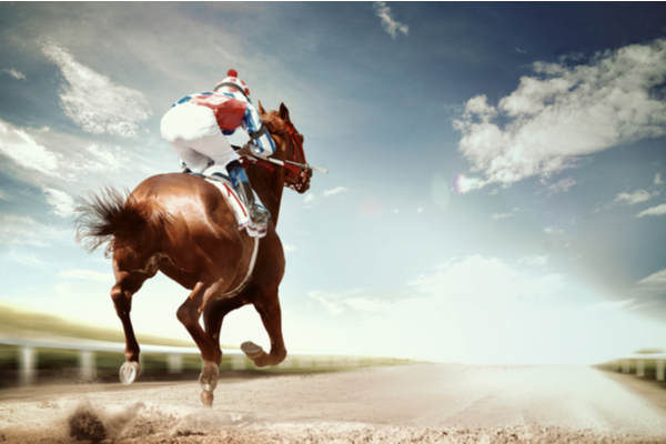 Horse Riding Step