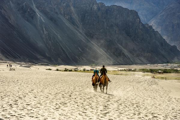 Ladakh for Horse Riding
