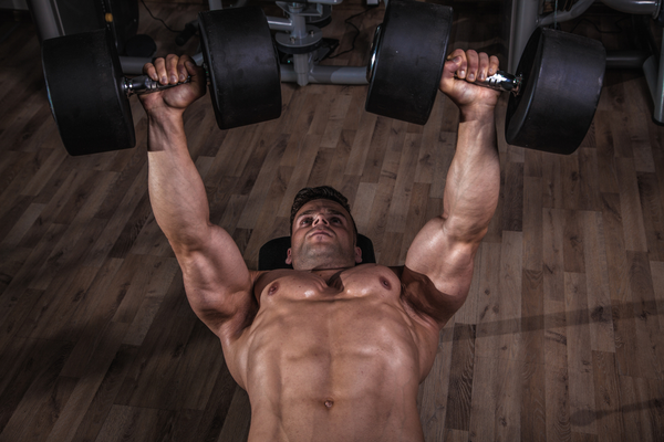 Dumbbell Bench Press for Push Day