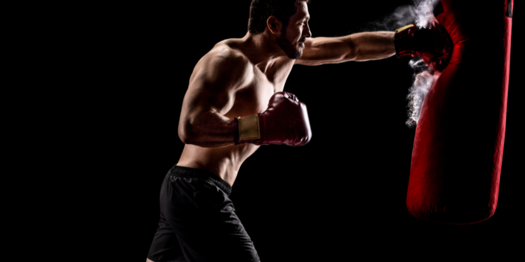 Buy The Best Everlast Punching Bag for Your Home Gyms