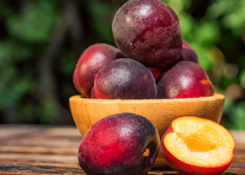 Pluot: What is it? And Get to Know 4 of Its Best Nutritional Benefits